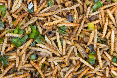 Fried bamboo larvae - national snack in Thailand