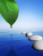 Zen stenen in het blauwe water en groen blad met druppel water