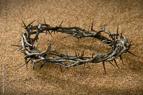 Crown of Thorns on Sand