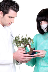 Doctors holding small tree