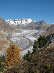 Great Aletsch Glacier, Longest Glacier In The Alps