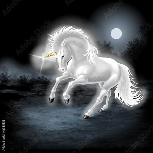 unicorno - 46385833