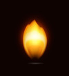Flame on black, icon