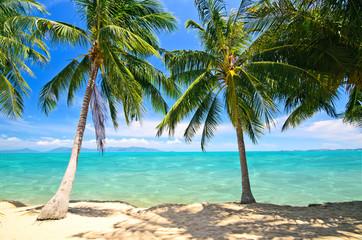 Strand im Norden von Koh Samui mit türkisblauem Wasser