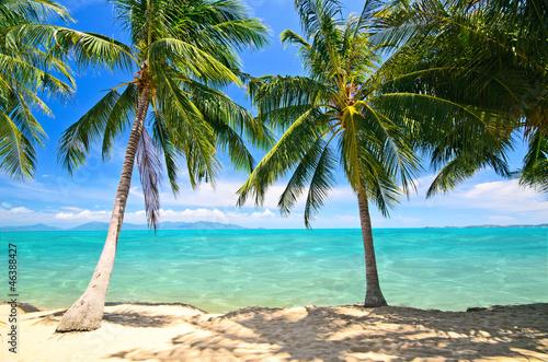 Strand im Norden von Koh Samui mit türkisblauem Wasser|46388427