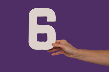 Female hand holding up the number 6 from the right