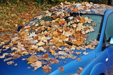 Auto im Herbst,  Car in the fall,