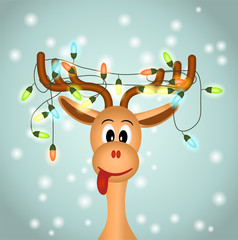 funny reindeerw with christmas lights