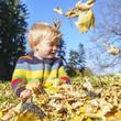 Spielereien im Herbstlaub