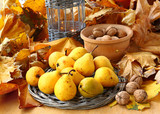 Rural autumn reason with pears and nuts poster