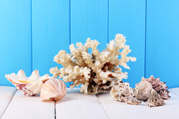 Decor of seashells on wooden table on blue wooden background