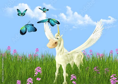 Poster Pony Pegasus