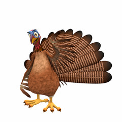 Happy Toon Turkey