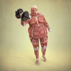 Anatomía Hombre levantando Pesa