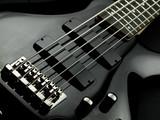 Five string bass guitar poster