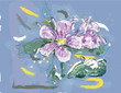Pink Jasmin flower in watercolor over a blue background
