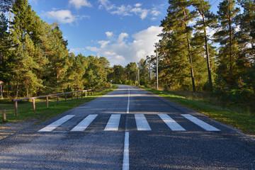 Zebrastreifen auf leerer Landstraße
