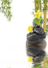 Asian Bamboo Zen samenstelling