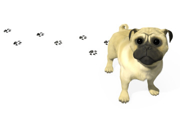 3D pug leaving footprints on the floor