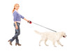 Full length portrait of a woman walking a dog