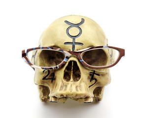 Skull wearing reading glasses