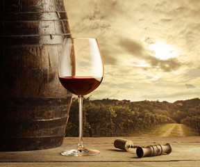 Red wine glass, vineyard on background