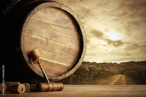 Vineyard and barrel © stokkete