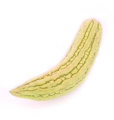 Cucurbitaceae