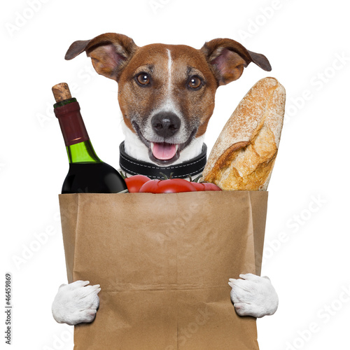 grocery bag dog wine tomatoes bread