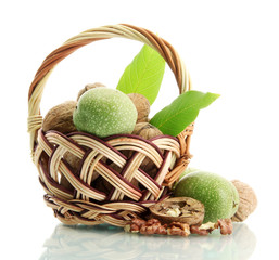 walnuts with green leaves in basket, isolated on white