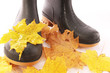 Gummistiefel im nassen Herbst