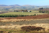 moorland in Northumberland with Cheviot Hills in background