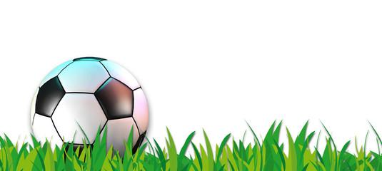 Fussball Banner Rasen