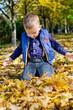 Little boy kneeling in autumn leaves