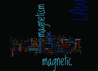 LAWS OF MAGNETIC DEVELOPMENT