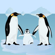 Penguins on an ice floe
