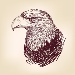 Eagle - vector illustration