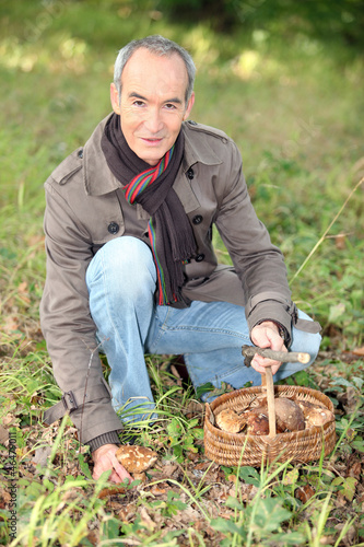 65 years old man kneeling and picking mushrooms