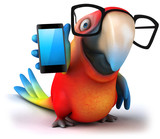 Fototapety Fun parrot