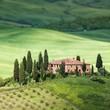 Tuscany landscape - belvedere