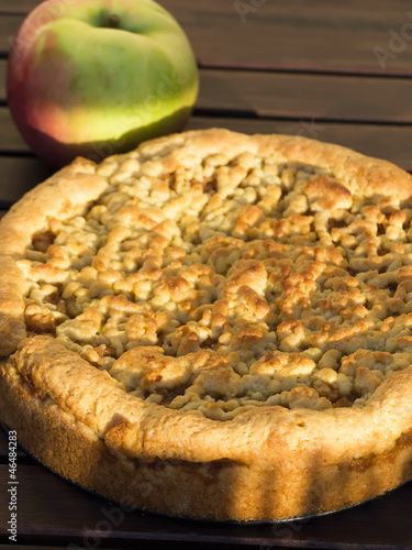 apple pie with aplle