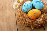 Fototapety Easter eggs in the nest
