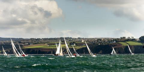 group yacht at regatta
