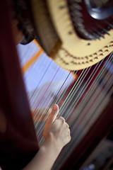 Harpe, harpiste, musique, musicien, instrument, main, corde