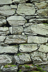 Dry-stone wall construction with moss