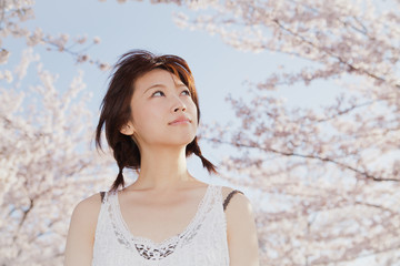A beautiful woman in cherry blossom
