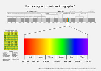 Vector infographic of electromagnetic spectrum