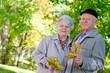 Beautiful senior couple