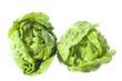 two sucrine salad