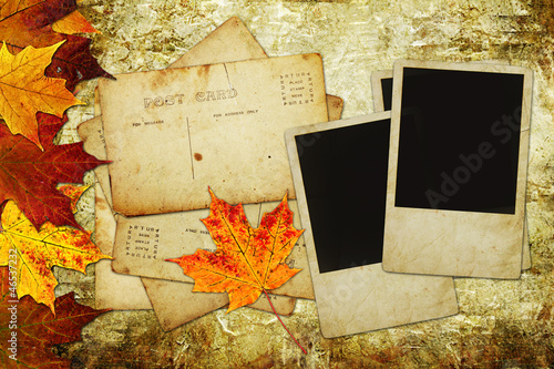 Blank Pictures Autumn Background with maple leaves